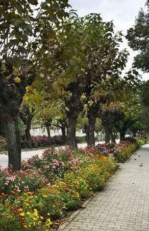 embankment: Embankment of Ohrid lake in Pogradec. Albania
