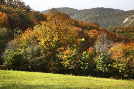 serbia: Radan mountain near Prolom Banja. Serbia Stock Photo