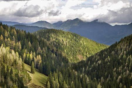paysage: Planina Konjscica. Julian Alps. Slovenia