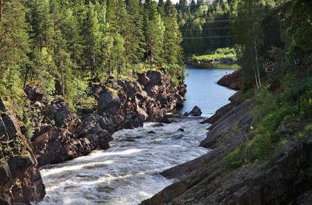 riverside trees: Vuoksi river in Imatra. Finland