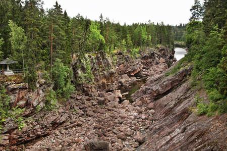 riverside tree: Riverbed of Vuoksi river in Imatra. Finland
