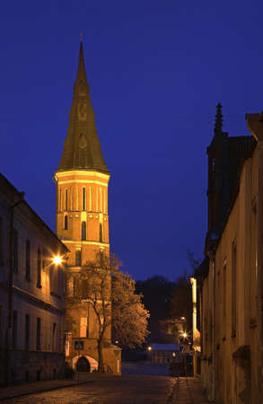 kaunas: church of Assumption of Holy Virgin Mary in Kaunas. Lithuania
