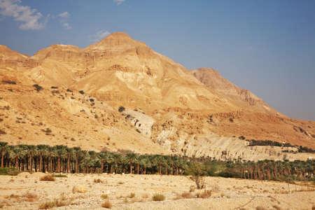 ein: Mountain near Ein Gedi. Israel