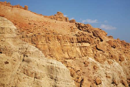 gedi: Ein Gedi national park. Israel