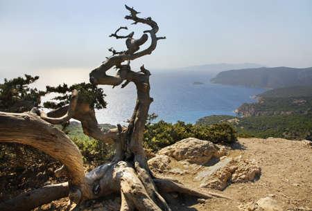 rhodes: Landscape near Monolithos village. Rhodes island. Greece Stock Photo