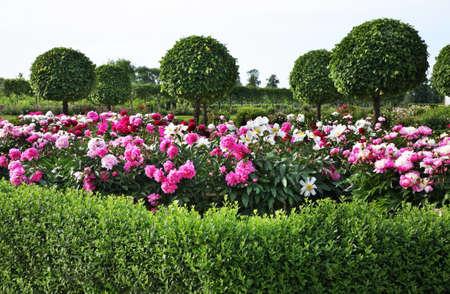 rundale: Park of Rundale Palace near Pilsrundale. Latvia