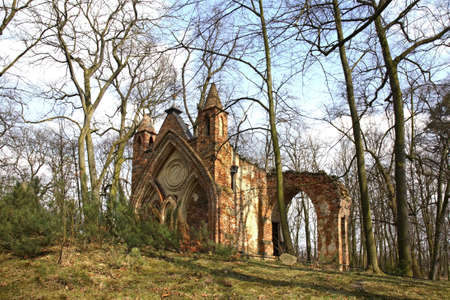 arkadia: Ruins of Gothic house in Arkadia park. Lowicz county. Poland