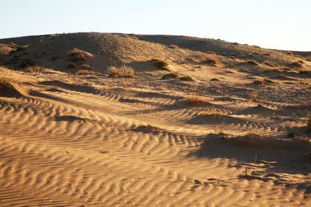 gobi: Gobi Desert near Sainshand. Mongolia Stock Photo