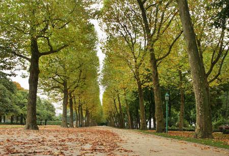 parc: Parc du Cinquantenaire - Jubelpark. Brussels. Belgium