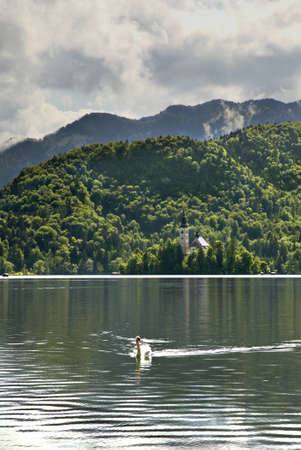 bled: View of lake Bled. Slovenia Stock Photo