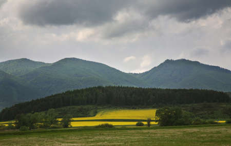 paysage: Landscape near Poprad. Slovakia