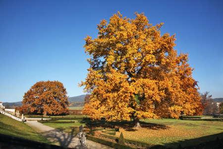 Gardens in Cesky Krumlov. Czech republic