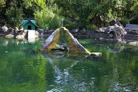 alupka: Swan Lake in Upper Park. Alupka. Crimea. Ukraine