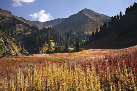 Medeo valley. Kazakhstan
