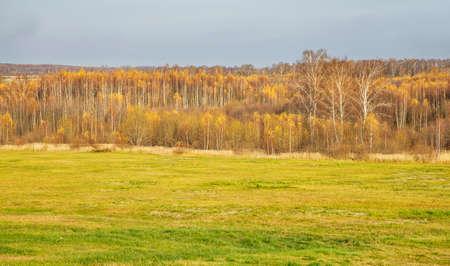 Borodino field near Borodino village. Russia