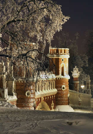 Figured bridge in Tsaritsyno. Moscow. Russia