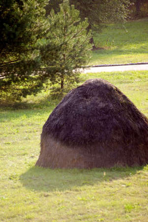 haycock: Haystack in the Belarus (near Russia)