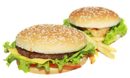 delicious cheeseburger with french fries  photo