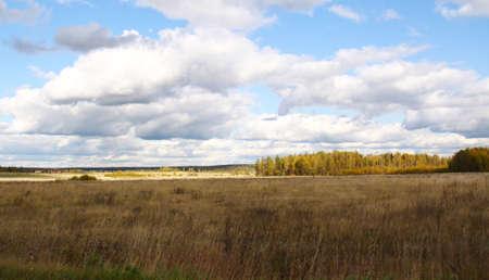 cloudy field Stock Photo - 6803346