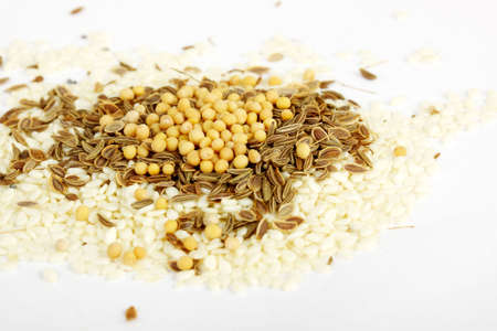 monosodium glutamate: mix variety of colorful spices
