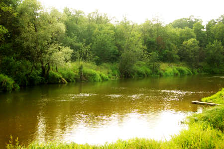 Green Forest and River in Russia Stock Photo - 7748053