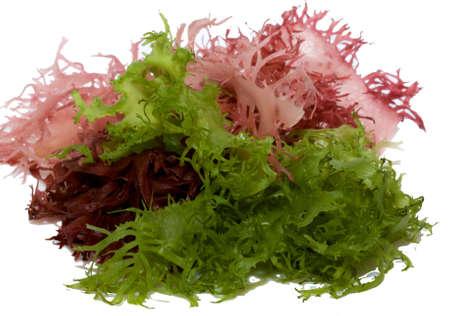 algas marinas: Jap�n trditional alimentos