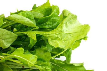 ruccola: Ruccola salad fresh heap leaf on white background