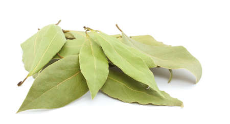 Laurel leaves isolated on white Stock Photo - 9430425