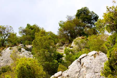 olimpo: Mount Olympus - pico m?s alto de Grecia Foto de archivo