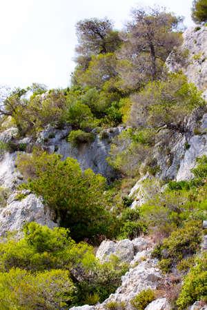 olimpo: Monte Olimpo - el pico m�s alto en Grecia