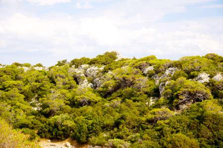 olimpo: Mount Olympus - pico m�s alto de Grecia Foto de archivo
