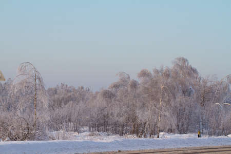 Winter road near forest in Russia photo