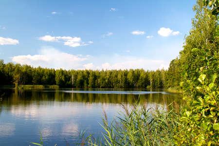 kilátás a gyönyörű folyó és az erdő