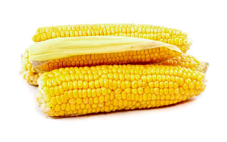 corn on cob isolated on white background photo