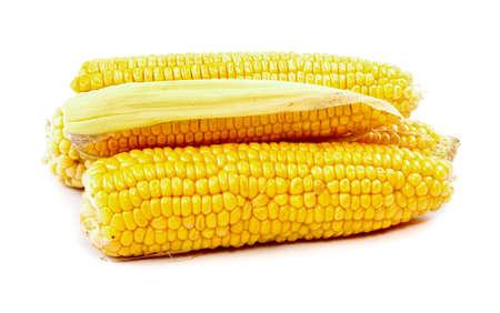 corn on cob isolated on white background Stock Photo - 11369877