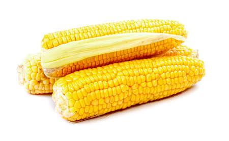 mais: corn on cob isolated on white background