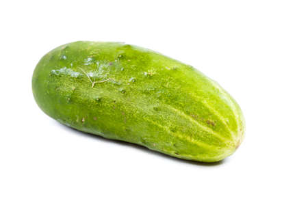 Cucumber isolated on white background photo