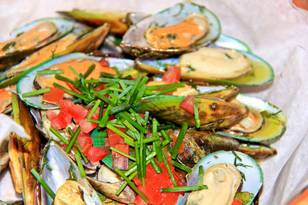 mussel - shellfish photo