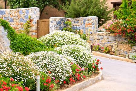 spring landscape: Nice garden