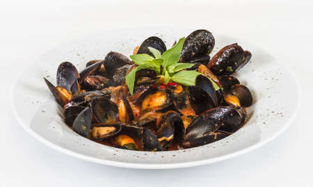close up on mussels on white background Foto de archivo