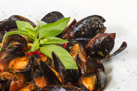 close up on mussels on white background Stock Photo
