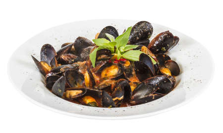 close up on mussels on white background photo