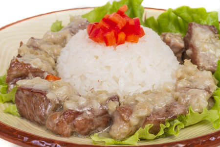 Rice and pork japanese style Stock Photo - 14037636