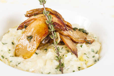photo of delicious risotto dish with herbs and mushrooms on white background photo
