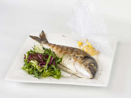 Dorada fish with salad on the white plate. Studio shot photo