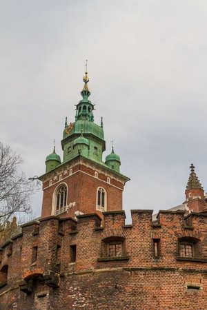 Royal castle in Wawel, Krakow Stock Photo - 14144015