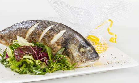 daurade: Dorada fish with salad on the white plate. Studio shot