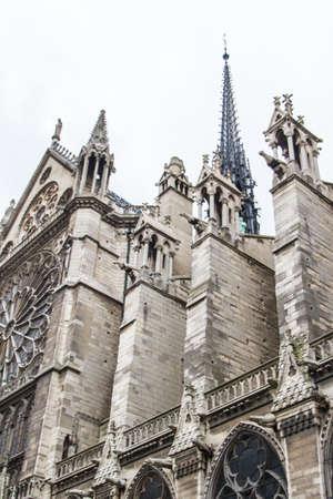 Notre Dame  Paris  photo