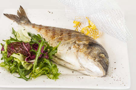 Dorada fish with salad on the white plate. Studio shot Stock Photo - 14363861