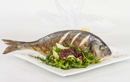 Dorada fish with salad on the white plate. Studio shot photo
